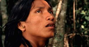 El canto de la selva Javier Cuenca, Oxigenarte