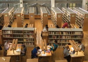 Biblioteca Cánovas del Castillo, Oxigenarte