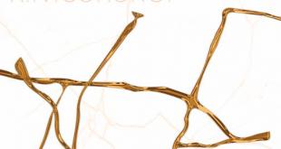 El malagueño Ayllón presenta nuevo álbum: 'Kintsukuroi'
